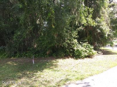 0 SE 106 Street, Belleview, FL 34420 (MLS #560049) :: Bosshardt Realty