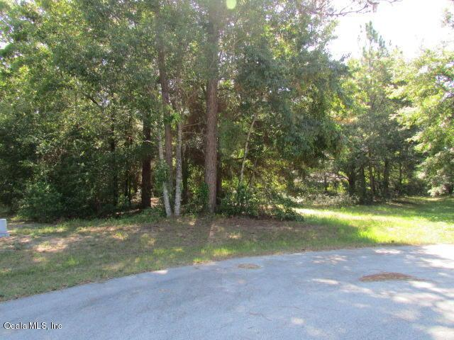 000 SW 193 Court, Dunnellon, FL 34432 (MLS #560643) :: Realty Executives Mid Florida