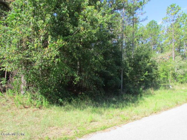 0000 SW 188 Circle, Dunnellon, FL 34432 (MLS #560646) :: Bosshardt Realty
