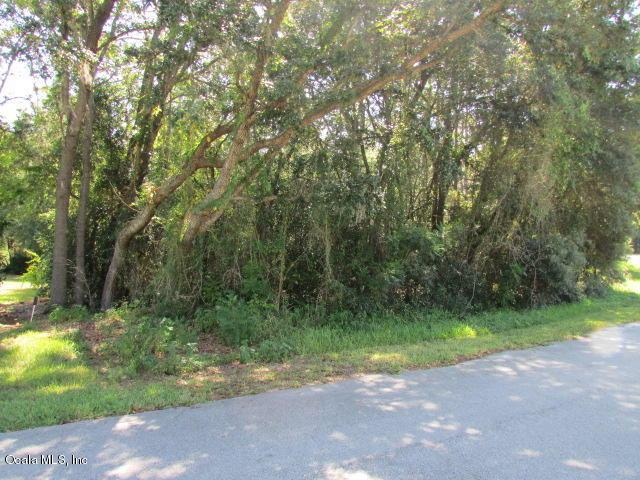 0000 SW 98 Place Road, Dunnellon, FL 34432 (MLS #560650) :: Realty Executives Mid Florida