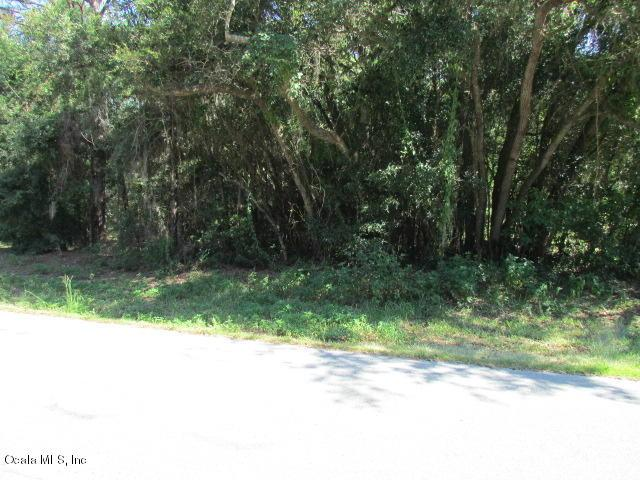 0000 SW 98 Place Road, Dunnellon, FL 34432 (MLS #560656) :: Bosshardt Realty