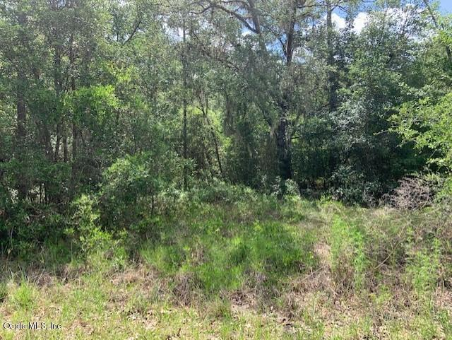 TBD SW Shorewood Drive, Dunnellon, FL 34431 (MLS #561097) :: Realty Executives Mid Florida