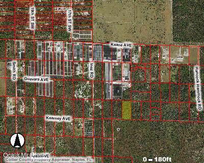 0 Kearney Ave., Naples, FL 34117 (MLS #562642) :: Bosshardt Realty