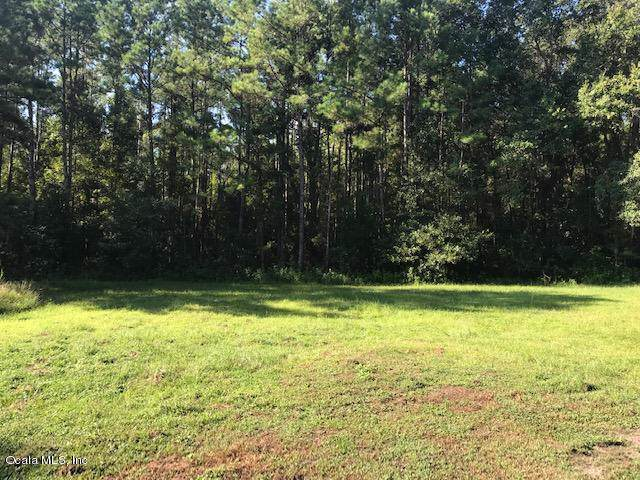 11455 NW 110TH Avenue, Reddick, FL 32686 (MLS #562646) :: Bosshardt Realty