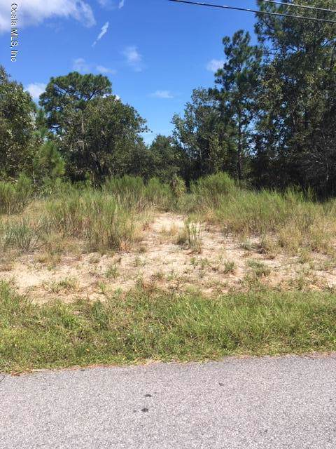 5404 W Atlanta Lane, Dunnellon, FL 34433 (MLS #562693) :: Pepine Realty