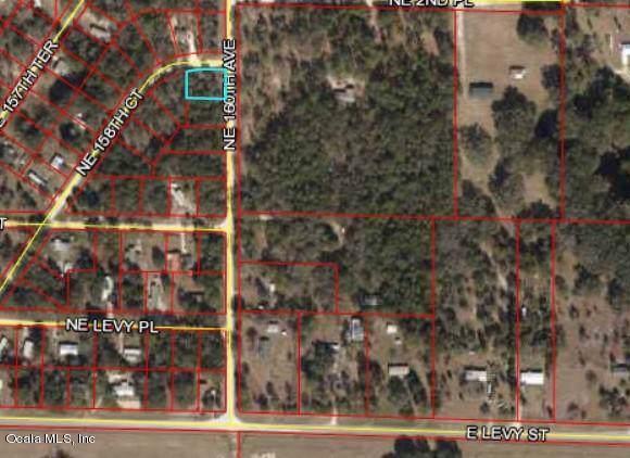 271 NE 158th Court, Williston, FL 32696 (MLS #562884) :: Thomas Group Realty