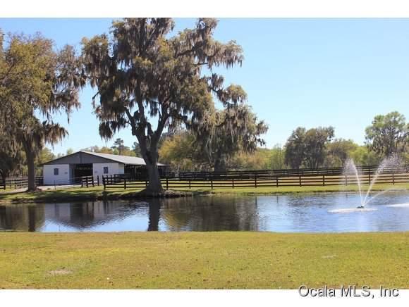 12026 NW Highway 464B, Ocala, FL 34482 (MLS #562964) :: Globalwide Realty