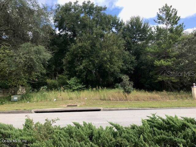 0 SE 42 Highway, Summerfield, FL 34491 (MLS #563256) :: Realty Executives Mid Florida