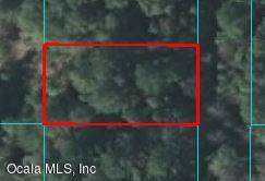 00 SE 43rd Terrace, Belleview, FL 34420 (MLS #563436) :: Realty Executives Mid Florida