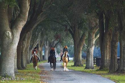 0 SE 116th Pl Road, Ocala, FL 34480 (MLS #563538) :: Realty Executives Mid Florida