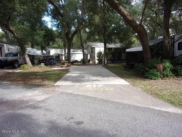 25176 NE 142 Place, Salt Springs, FL 32134 (MLS #564193) :: The Dora Campbell Team