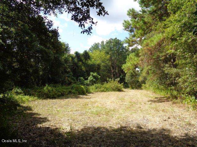 0 NW 5th Street, Micanopy, FL 32667 (MLS #564573) :: Thomas Group Realty