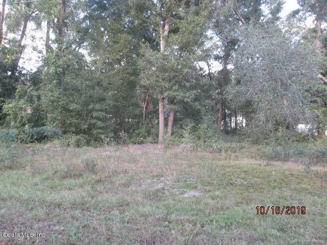 0 SE 84th Ave Avenue, Summerfield, FL 34491 (MLS #564731) :: Bosshardt Realty