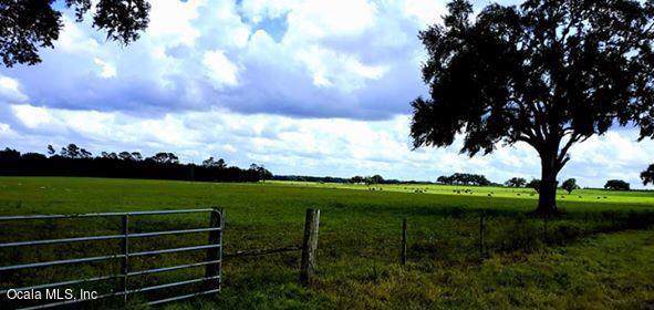 20150 NW 13th Street, Dunnellon, FL 34431 (MLS #564823) :: Realty Executives Mid Florida