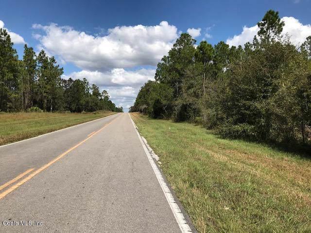 TBD SE County Road 337, Morriston, FL 32668 (MLS #564913) :: Bosshardt Realty