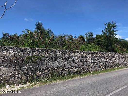 0 Leopoldina Vda Martinez, Punta Cana, FL 00000 (MLS #565954) :: Bosshardt Realty