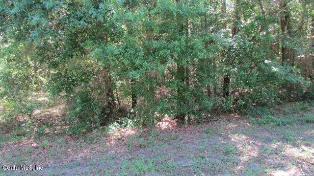 TBD SW 197 Ct Road, Dunnellon, FL 34432 (MLS #566122) :: Globalwide Realty