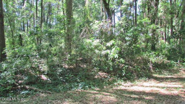 TBD SW 194 Circle, Dunnellon, FL 34432 (MLS #566129) :: Globalwide Realty