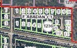 2283 E Citrus Springs Boulevard, Citrus Springs, FL 34434 (MLS #566144) :: Bosshardt Realty