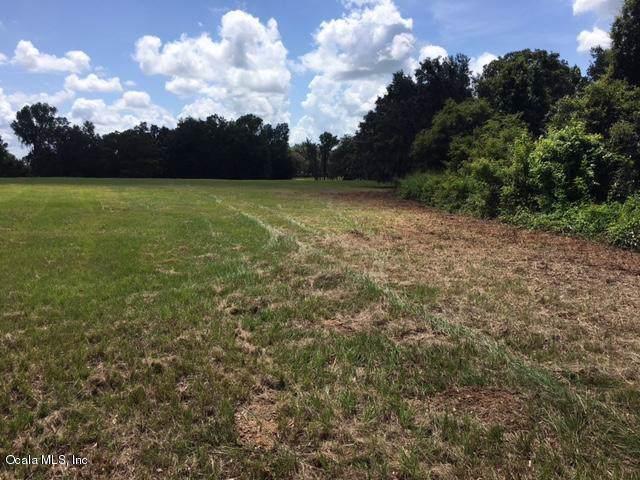 tbd NW 135 And Corner Of Hwy 225, Reddick, FL 32686 (MLS #566225) :: Bosshardt Realty
