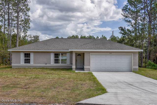 16286 SW 23rd Court Road, Ocala, FL 34473 (MLS #566283) :: Pepine Realty