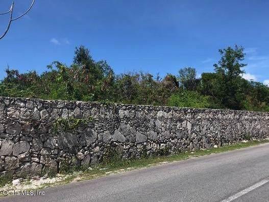 0 Leopoldina Vda Martinez, Punta Cana, FL 00000 (MLS #566323) :: Bosshardt Realty