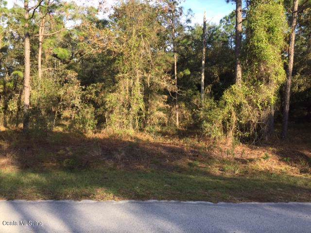 LOT 3 NW Timberlake Road, Dunnellon, FL 34431 (MLS #566808) :: The Dora Campbell Team