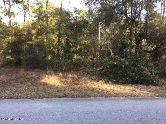 LOT 4 NW Timberlake Road, Dunnellon, FL 34431 (MLS #566812) :: The Dora Campbell Team
