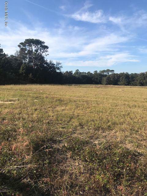 TBD SE 156th Place Road, Weirsdale, FL 32195 (MLS #566826) :: The Dora Campbell Team