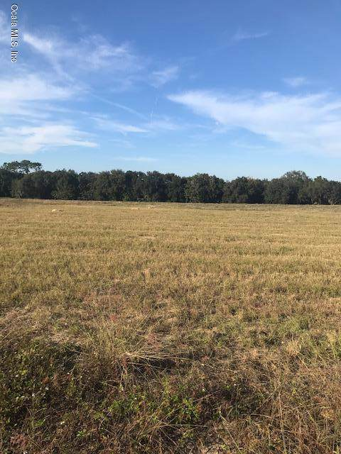 TBD SE 156th Place Road, Weirsdale, FL 32195 (MLS #566828) :: The Dora Campbell Team