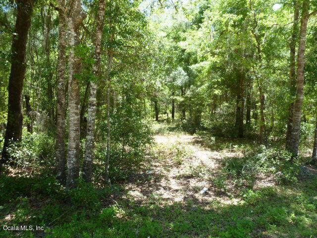TBD NE 155th Terrace, Williston, FL 32696 (MLS #567107) :: Bosshardt Realty