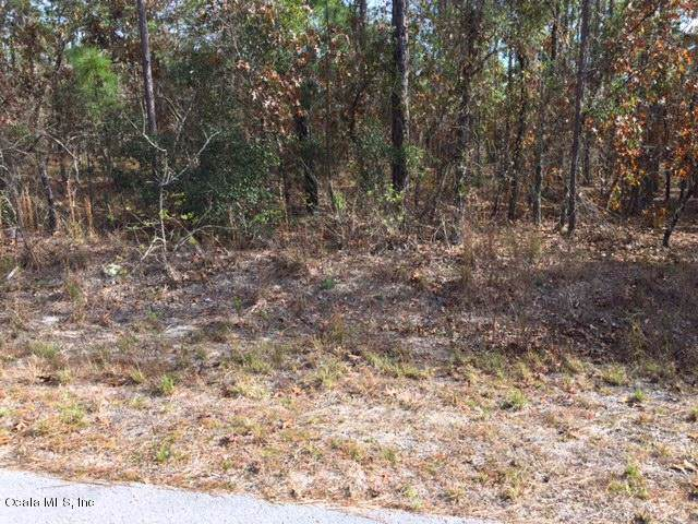 LOT 33 SW Sycamore Road, Dunnellon, FL 34431 (MLS #567358) :: Bosshardt Realty