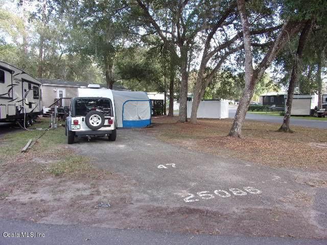 25086 NE 143 Street, Salt Springs, FL 32134 (MLS #569040) :: Pepine Realty