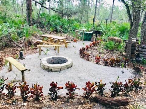 3251 Michele Avenue, Lake Placid, FL 33852 (MLS #569448) :: Pepine Realty