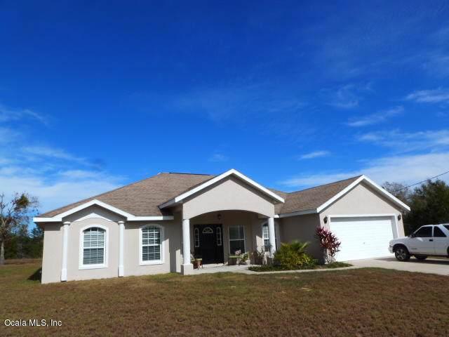 139 Malauka Loop, Ocklawaha, FL 32179 (MLS #569463) :: Pepine Realty