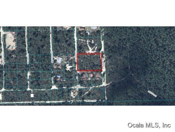 TBD NE 160th Avenue, Fort Mccoy, FL 32134 (MLS #420062) :: Bosshardt Realty