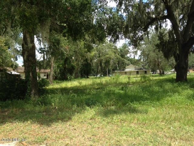 73 NW 21st Place, Ocala, FL 34475 (MLS #522186) :: Bosshardt Realty