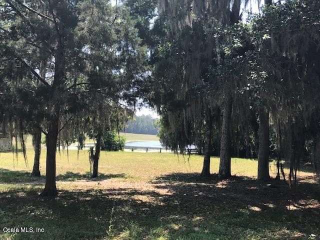 2002 SW 44th Lane, Ocala, FL 34471 (MLS #537973) :: Bosshardt Realty