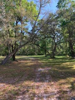 1542 SE 349 Highway, Old Town, FL 32680 (MLS #553525) :: Bosshardt Realty