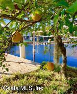 330 SE 241st Street, Suwannee, FL 32692 (MLS #554742) :: Bosshardt Realty