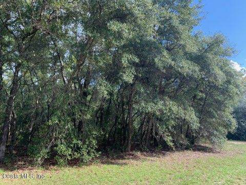 TBD SW 44th Avenue, Ocala, FL 34473 (MLS #565137) :: Bosshardt Realty
