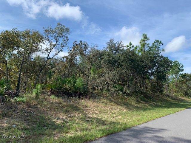 1357 W Riley Drive, Citrus Springs, FL 34433 (MLS #565148) :: Bosshardt Realty