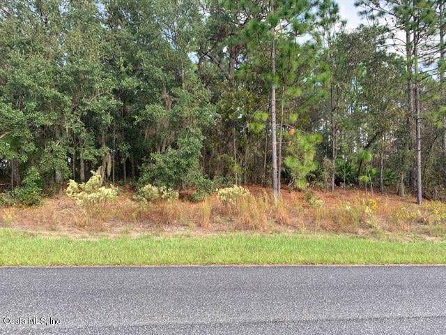 6787 N Pavilion Loop, Citrus Springs, FL 34433 (MLS #565154) :: Bosshardt Realty