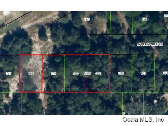 2682 W Plumtree Lane, Dunnellon, FL 34433 (MLS #428178) :: Realty Executives Mid Florida