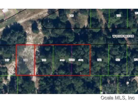 2682 W Plumtree Lane, Dunnellon, FL 34433 (MLS #428178) :: Bosshardt Realty