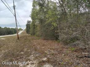 7661 Silver Sands Road, Keystone Heights, FL 32656 (MLS #533533) :: Bosshardt Realty