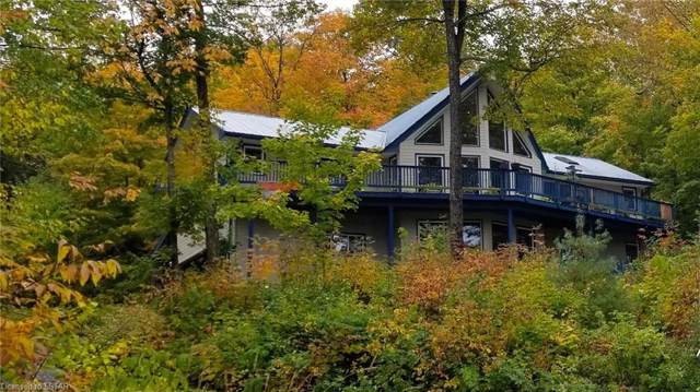 19243 On-35 Highway, Algonquin Highlands, ON K0M 1J2 (MLS #224080) :: Sutton Group Envelope Real Estate Brokerage Inc.
