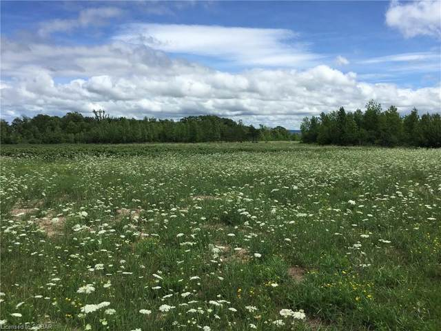 067086 4 Sideroad, Meaford, ON N4L 1W7 (MLS #275893) :: Forest Hill Real Estate Collingwood