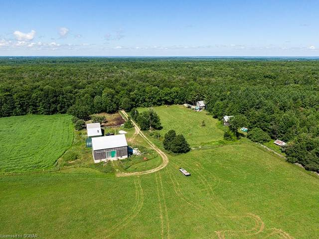 557733 4TH Concession N, Meaford, ON N4K 5W4 (MLS #276918) :: Forest Hill Real Estate Collingwood