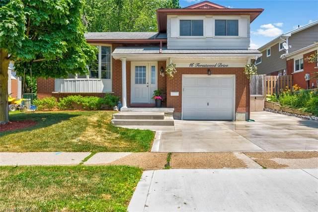 16 Forestwood Drive, Kitchener, ON N2N 1B1 (MLS #30819496) :: Sutton Group Envelope Real Estate Brokerage Inc.